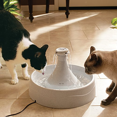 Drinkwell 360 stainless steel pet fountain manual